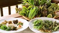 ≪今だけ春の味・山菜づくしのオードブル≫信州ポークのスペアリブ&岩魚お料理満喫フルコース(1泊2食)