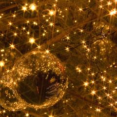 【Sweet Night Memories】星降る夜空のクリスマス(2食付)