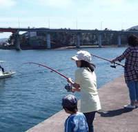 ■2食付■釣竿レンタル&エサ無料!家族で♪釣った魚が食べられる♪