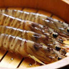 【一番人気】迷ったらコレ☆海鮮満喫!日間賀島の新鮮魚介を味わうスタンダード会席