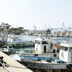 名鉄海上観光船20%OFF【白子付】とらふぐ&タコ☆日間賀島名物を堪能♪