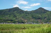 【GW】初夏の新緑溢れる国東半島へようこそ♪〜海の幸山の幸に舌鼓!!GW特別会席プラン〜
