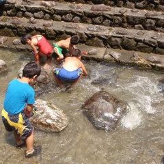 【夏休み】冷たーい川で★山女魚のつかみどり体験【1泊3食付】