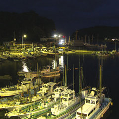 漁港近くのお宿で新鮮な海の幸を食べ尽くす!2食プラン