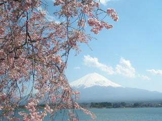 さき楽28★富士山と河口湖の絶景を楽しむ13人用コテージB型★素泊まり★