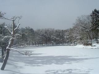 北欧のログハウスでクリスマスを過ごすプラン【冬得】