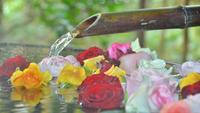 【貸切風呂確約】本日はバラ湯の日◆月に6日間だけのPrivate bath time・・・