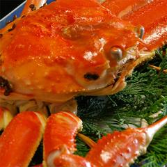 越前蟹の≪茹でガニ≫付!ちょっと蟹を食べたい方に♪