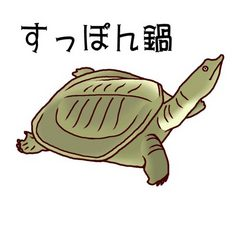 栄養満点♪コラーゲンた〜っぷり☆すっぽん鍋コース<平日なら11550円〜>