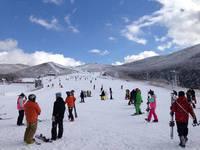 【TRY!九州】現金特価 リフト券とレンタルがついてお得! 九重森林スキー場手ぶらパック