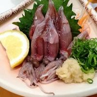 【期間限定】旬の味!<ホタルイカ料理>が付いた舟盛りコースでこの時期しか味わえない海の幸を満喫〜