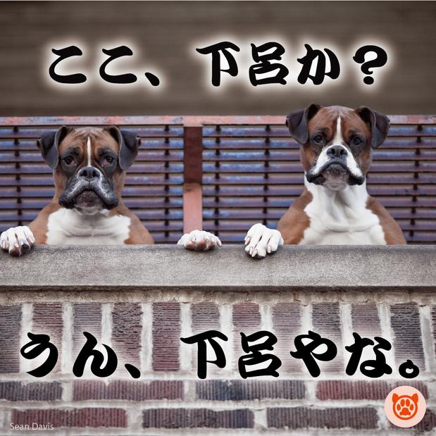 ペット(犬)同宿歓迎【ぎふ地酒】\選べる地酒飲み比べ付き!/七輪で炙る飛騨牛を堪能♪炭火焼会席