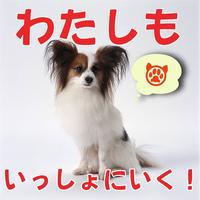 愛犬と一緒にお部屋食!平日のみ!【ペット(犬)とお泊り】飛騨牛食べ尽くし会席♪