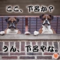【ペット(犬)とお泊り】飛騨牛×松茸をすき焼きに!当館最上級!飛騨路特上会席【秋のぎふ旅】特典付き