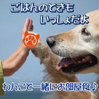 【ペット(犬)とお泊り】愛犬と一緒★飛騨牛と松茸のすき焼きをお部屋で♪飛騨路特上会席!