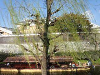 春爛漫!酒蔵の伏見十石舟と桜並木そぞろ歩きプラン 〜お菓子付〜