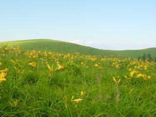 GW(ゴールデンウィーク)から初夏に清々しい高原を遊ぶ PayPay利用出来ます