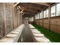 【訳あり☆☆ちょっぴり狭めのお部屋】幸運コース(全13品)☆☆ 貸切風呂無料♪