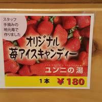 【楽天限定】由仁産の苺を使ったアイスキャンディー付き!コーヒー色のお湯でお肌すべすべ!1泊2食プラン