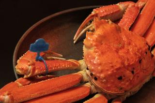 タグ付活蟹お一人2.5杯ご用意!茹で活蟹丸ごと1匹付き★かに会席コース♪2種類の貸切温泉も無料