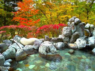 秋の紅葉・グルメ満喫プラン 〜板室温泉・塩原温泉で秋を満喫〜