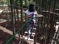 自然で遊ぼう!上野村源流水付き★フォレストアドベンチャーパック宿泊プラン【食事無し】