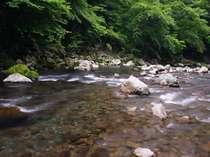 Танабе - Ryujinmura Komatagawa Bungalow