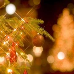【冬期限定】【二食付】クリスマスディナーでゴージャスなひと時を!特別ディナーノエル付プラン