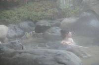 【豪華絢爛】やまぐち・湯田温泉 古稀庵への旅〜天然トラフグフルコース付ご宿泊プラン