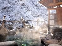 【冬季限定】石打&湯沢まで車で30分圏内!雪見の露天風呂と田舎料理に舌鼓♪(夕朝食付)