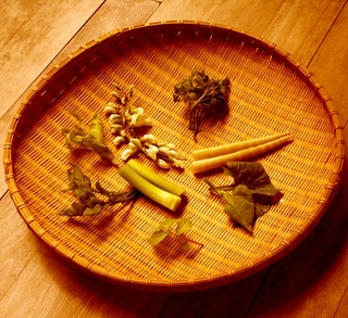 """【基本コース-Standard-】夕食はちょっと贅沢に個室で""""旬の山菜""""と国産牛ステーキを味わう"""