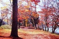 秋色の山中湖を楽しむ、かつてないお得感満載のプラン【期間限定1泊2食基本プラン】