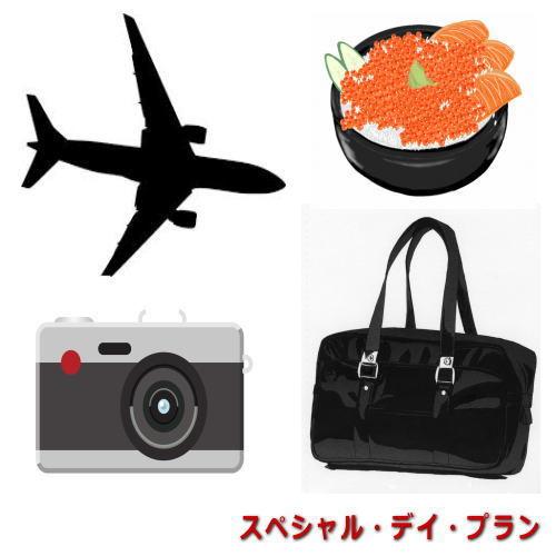 401【スペシャル・デイ・プラン】JR札幌駅北口より徒歩約3分・ホテルサンルート札幌(食事なし)