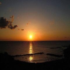 【10月〜11月限定】答志島ブランド★一本釣り★旬のサワラを食べよう