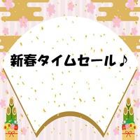 【首都圏☆感謝祭】直前割・1月大謝恩セール(素泊まり)