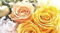 ☆大切な誕生日や記念日に☆【ケーキor花かご選べる特典付き】貸切風呂でのんびり(2食付)