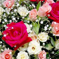【アニバーサリープラン】ホールケーキor花かごのサプライズ☆記念日特典/2食付