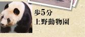 歩5分上野動物園