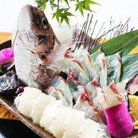 """【お料理グレードUp-選べるひと品-】 『赤あわび』or『鯛の姿造り』をチョイス""""お好みの一品""""を。"""
