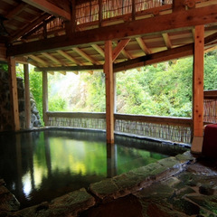 【1泊2食】間欠泉と鬼怒川の渓谷美を眺める♪奥日光の秘湯を満喫!