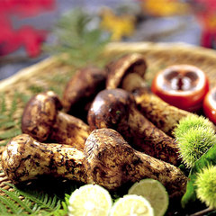 大満足!松茸料理3品付〜秋の味覚コース☆お部屋食<秋の味覚の王様!旬の松茸を味わう>