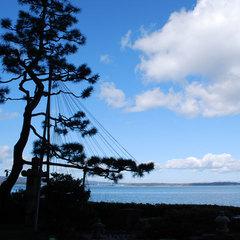 【スタンダードプラン】海の見える客室でお部屋食!<美湾荘のスタンダード>