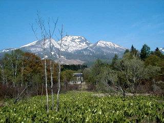 【素泊り】高原のミズナラの森のお宿・素泊りプラン