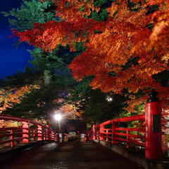 【10/3〜11/3限定】紅葉名所『中野もみじ山』まで徒歩10分♪秋の味覚プラン<2食付>