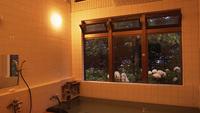 ◆青森・春の風物詩◆弘前さくら祭りに行こう!≪1泊2食付≫【巡るたび、出会う旅。東北】