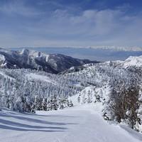 【冬☆連泊プラン】連泊でお得♪一の瀬スキー場0分!志賀高原でたっぷりスキー三昧