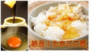 ☆絶品朝食【 京都丹波産 厳選たまご】の栄養満点卵かけご飯