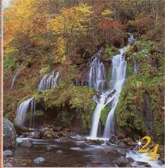 秋だ高原に行こう花に温泉に!清里駅から徒歩3分・素泊まり5300円〜の気ままな格安宿泊フリープラン!