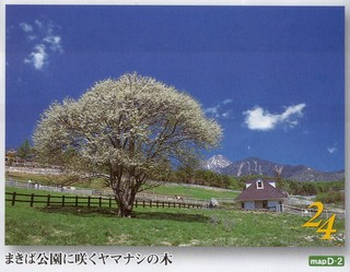 春だ!新緑の高原に出かけよう!清里駅から徒歩3分・素泊まり・5300円〜の気ままな格安宿泊プラン
