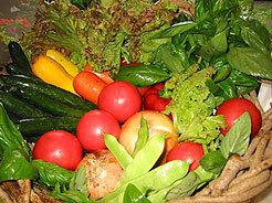 美味しい高原野菜を食べに来て!清里駅の近く一泊・朝食付き5800円〜のんびりチエックインの宿泊プラン